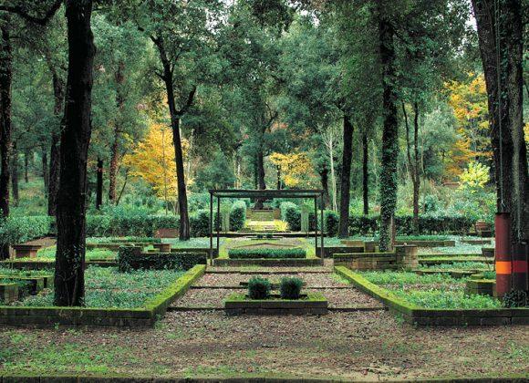The Bosco della Ragnaia