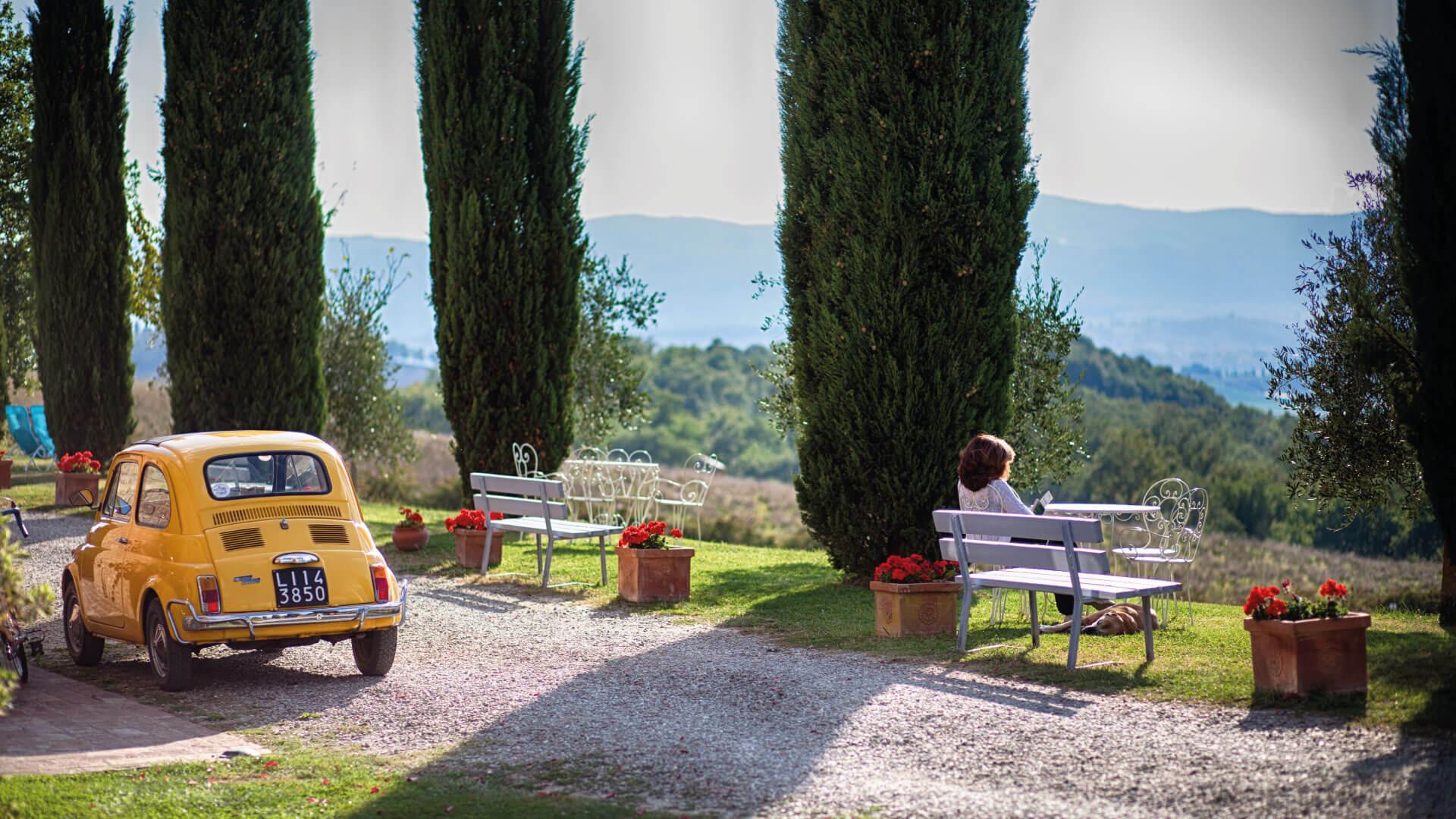 tuscany villa cypress trees