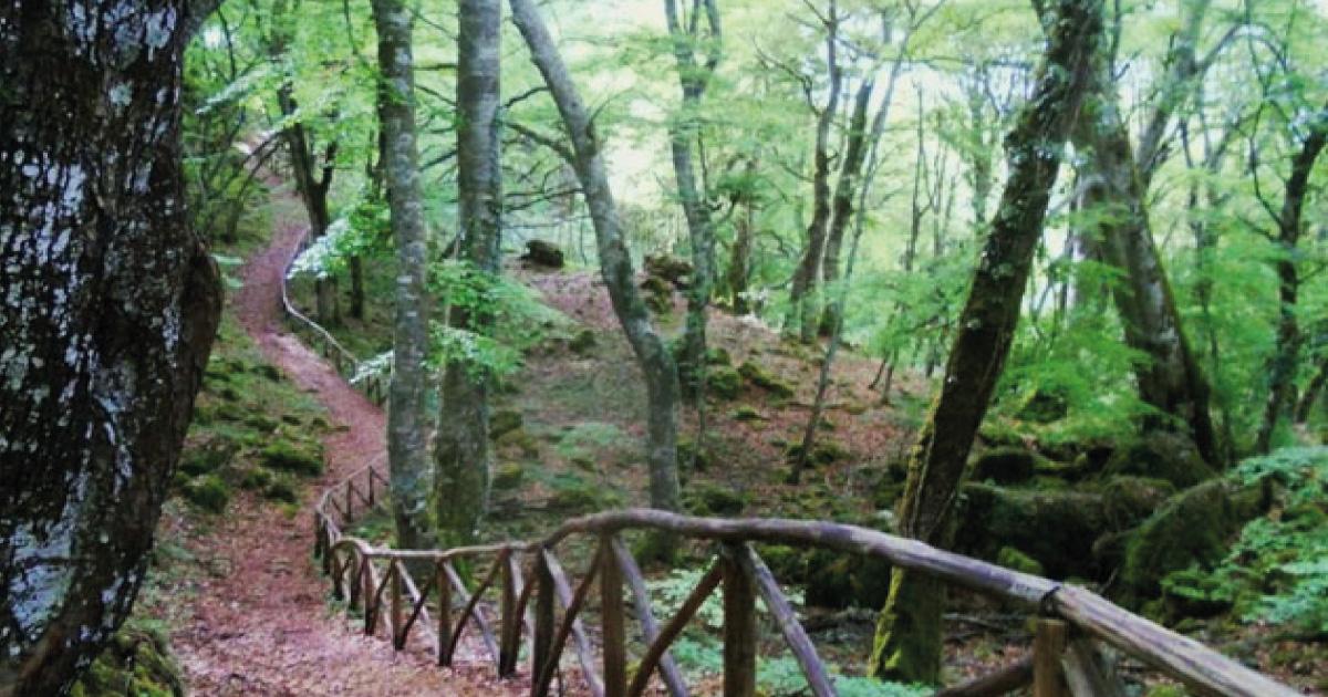 giardini e parchi in toscana riserva di pietraporciana