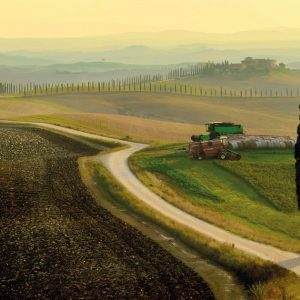 Taste and Relax in the Crete Senesi