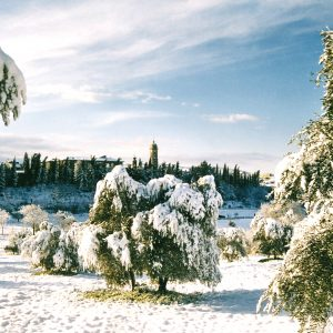 WINTER IN TUSCANY